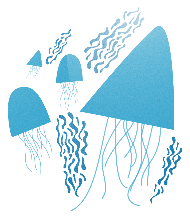 ra-illustration-jellyfish